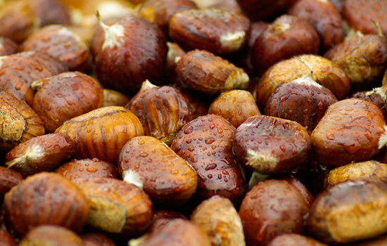 chestnuts-fall-brown-raindrops